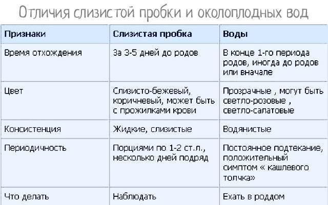 Слизистая пробка при беременности: как выглядит, как отходит, какого цвета слизистая пробка при беременности / mama66.ru