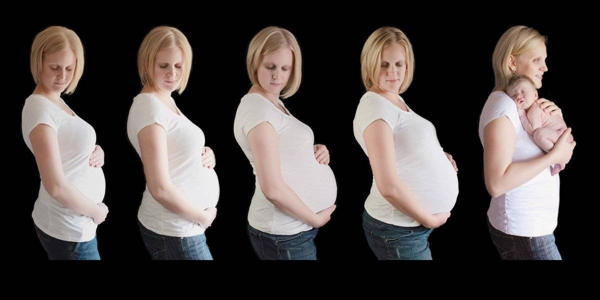 Когда, на каком сроке при беременности начинает расти грудь и насколько она увеличивается? — беременность