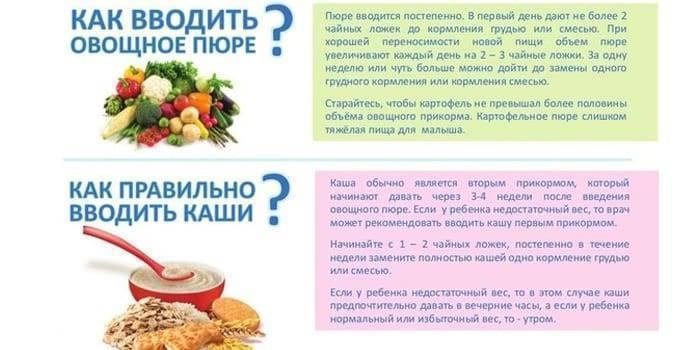 Схема введения прикорма у детей до года