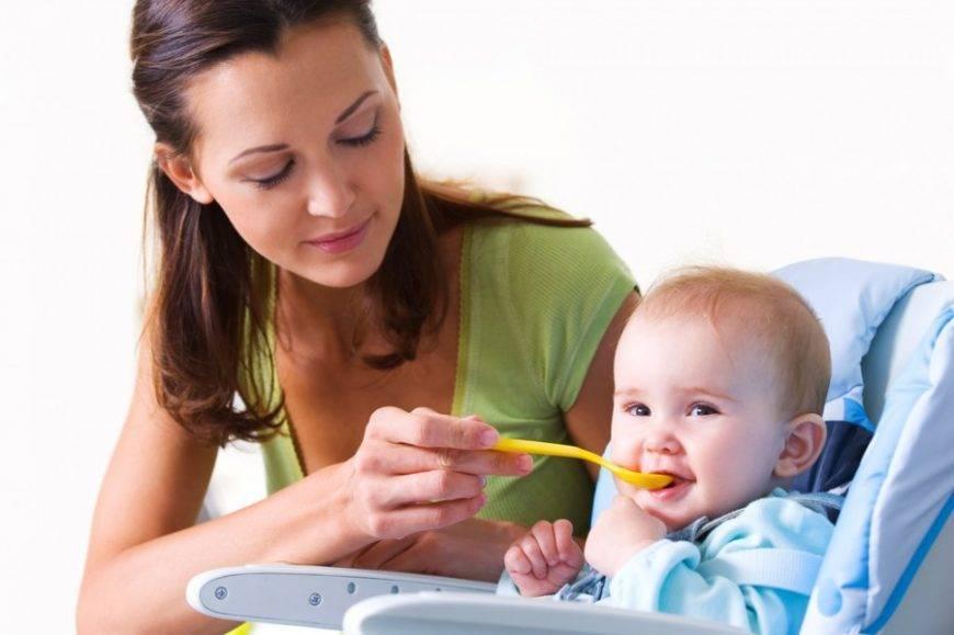Меню ребенка в 9 месяцев: основной рацион и таблица питания для малыша до года