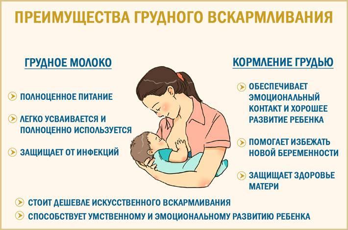 Преимущества грудного вскармливания • центр гинекологии в санкт-петербурге