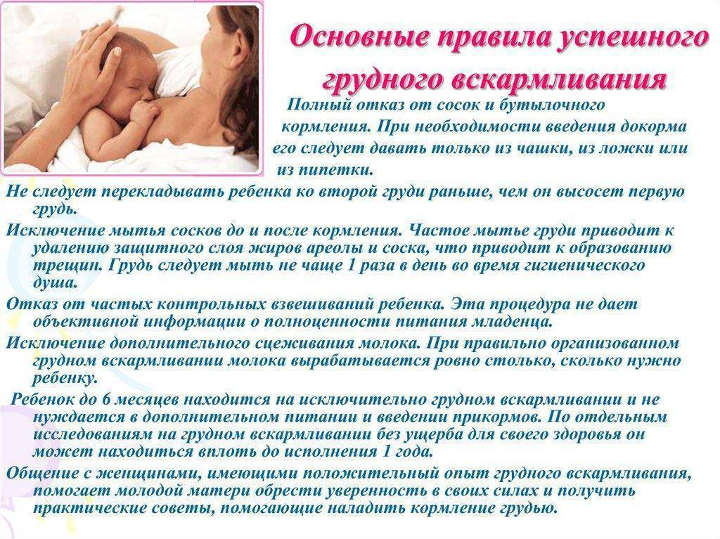 Как бросить кормить грудным молоком, советы маммолога, подробная информация!