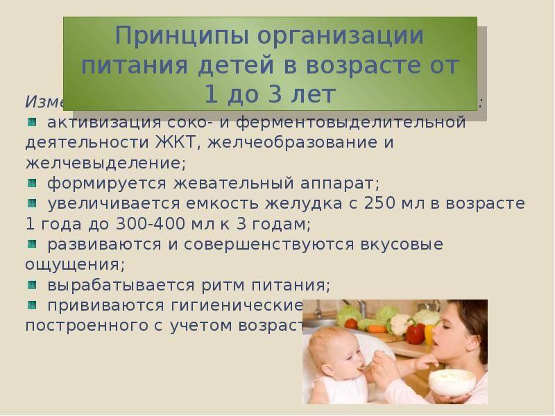 Сколько должен весить ребенок в 8 месяцев