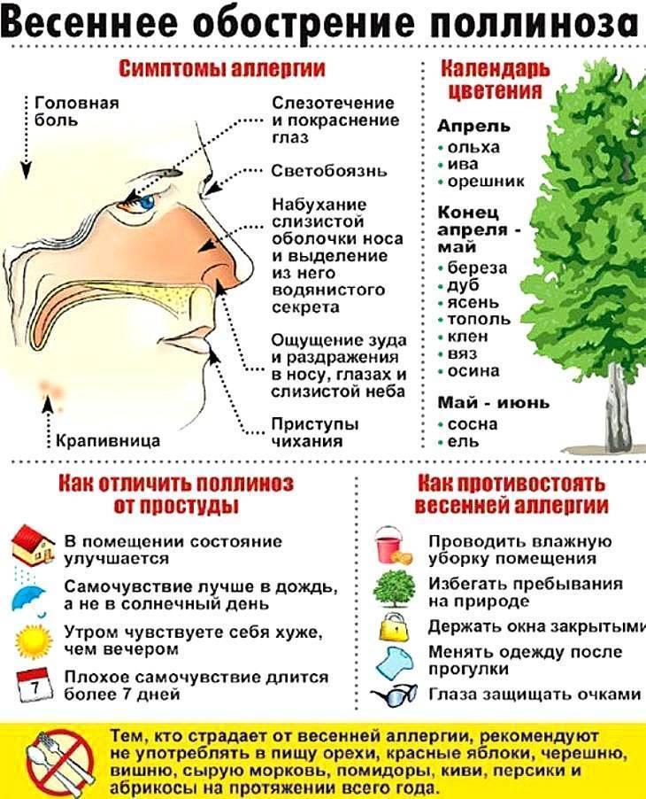 Аллергия на цветение растений: периоды обострения, симптомы и лечение