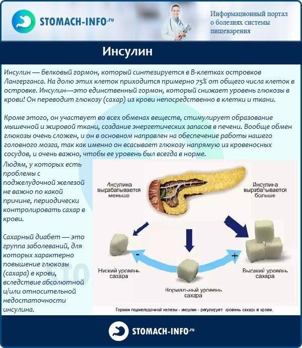 Сахарный диабет  - симптомы, причины развития, лечение
