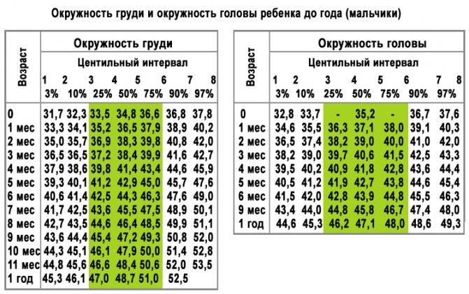 Окружность головы и грудной клетки ребенка: норма, таблица