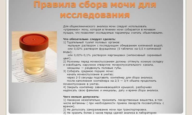 Можно ли кормить младенца перед сдачей крови ~ детская городская поликлиника №1 г. магнитогорска