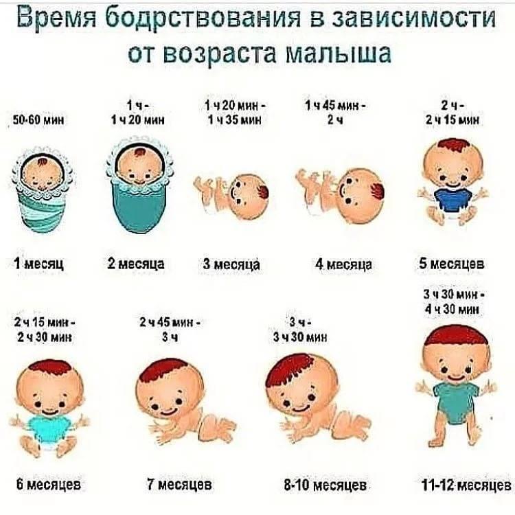 Длительность сна малыша по месяцам