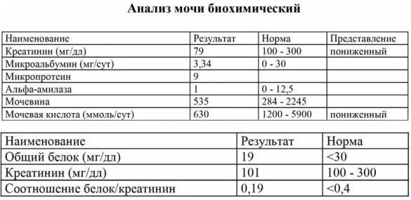 Иммуноглобулин Е: норма у детей, повышенные и низкие показатели в общем анализе крови (таблица)