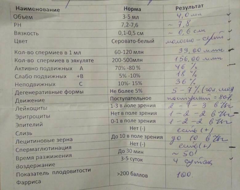 Показатели спермограммы: норма и качество спермы, расшифровка спермограммы