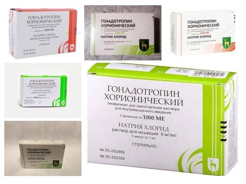 Гонадотропин хорионический - инструкция по применению, описание, отзывы пациентов и врачей, аналоги