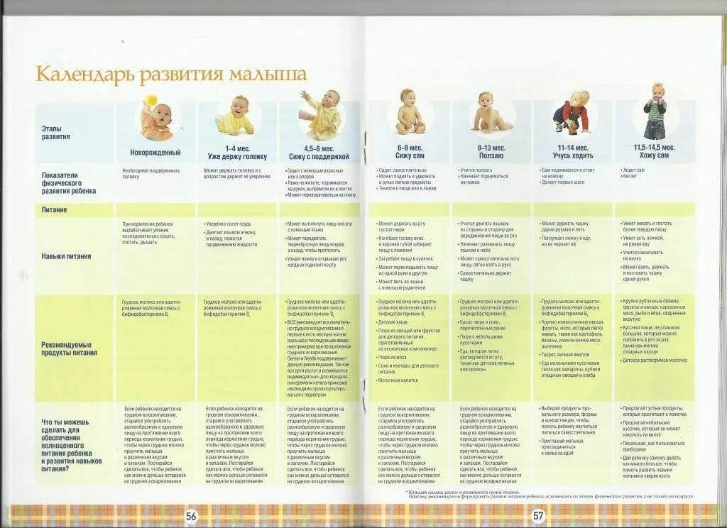 Что должен уметь ваш малыш в 1 год и 7 месяцев?