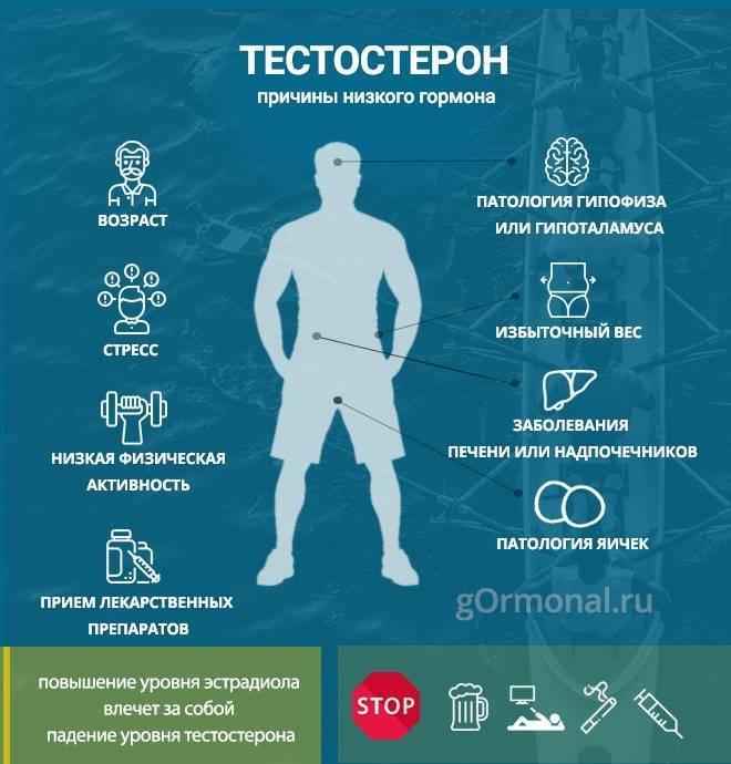 Повышенный тестостерон у женщин: симптомы и способы устранения проблемы