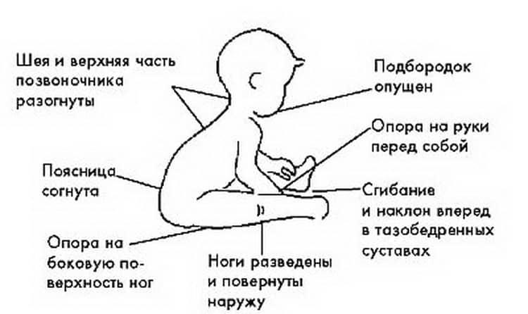 Когда ребенок начинает ползать: во сколько месяцев – в каком возрасте ползает, когда грудничок начинает ползать по-пластунски и на животе, особенности у мальчиков и девочек