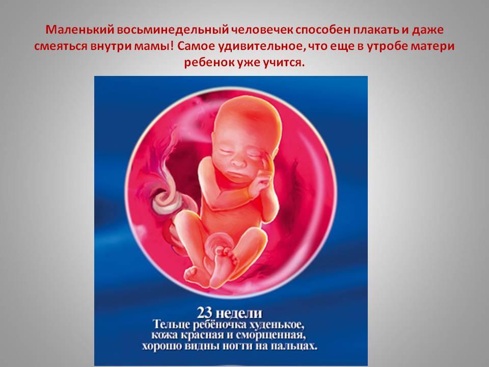 Как состояние здоровья будущей матери может повлиять на зрение ребенка?