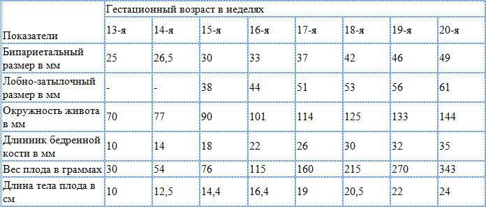 Бпр (бипариетальный размер головы) – что это? норма, таблица по неделям бпр