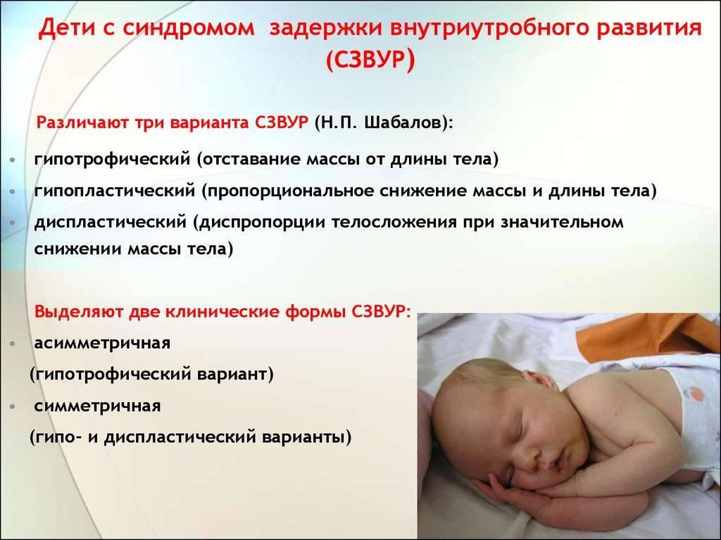 Фарматека » вскармливание недоношенных и маловесных детей после выписки из стационара