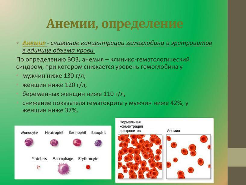 Анализ крови - расшифровка у взрослых, норма в таблице