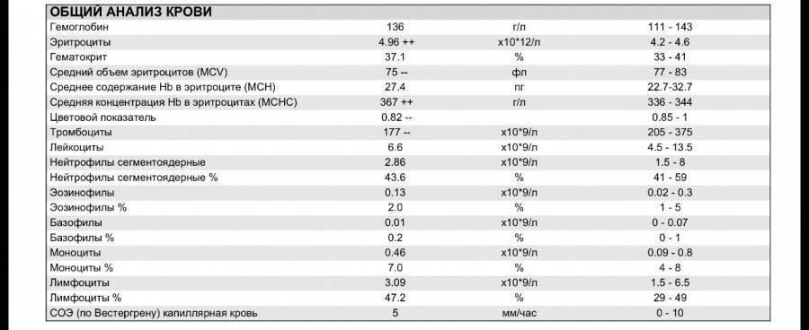 Rdw (cv и sd) в анализе крови - почему повышен или понижен, расшифровка, норма, показатель ширины распределения эритроцитов по объёму