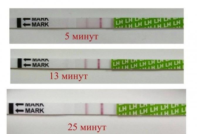 Может ли тест на овуляцию определить беременность, что он покажет в случае зачатия?