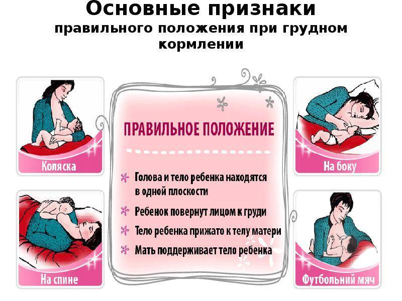 Массаж груди для улучшения лактации грудного молока
