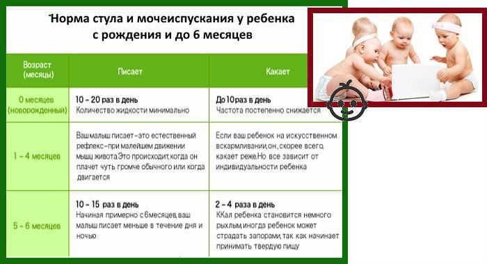 Сколько раз в день и каким должен быть стул у новорожденного