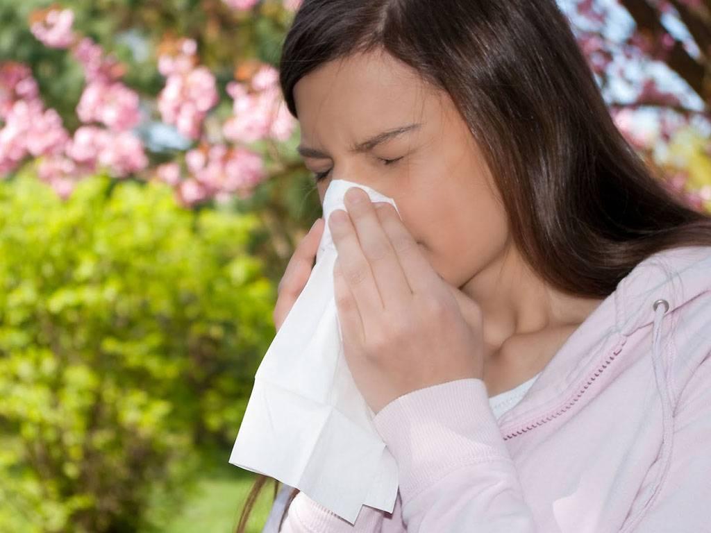 Поллиноз: аллергия на пыльцу, сенная лихорадка. симптомы,  методы диагностики и лечение поллиноза