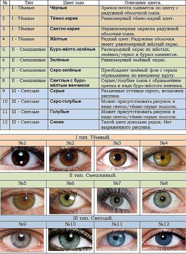 Формирование зрительной функции у детей