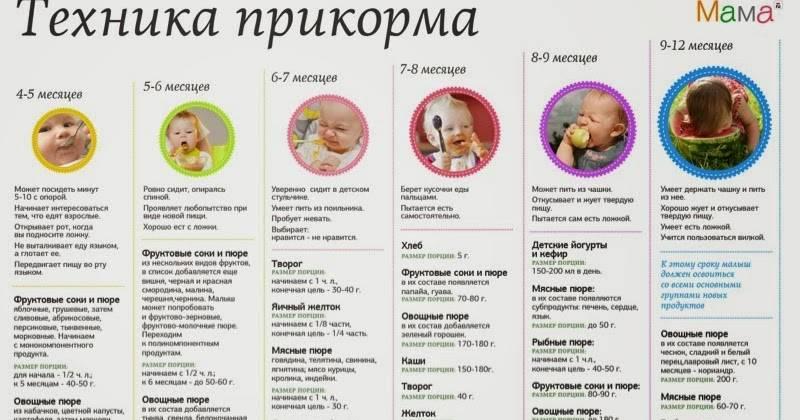 Когда можно давать ребенку банан: с какого возраста, со скольки месяцев?