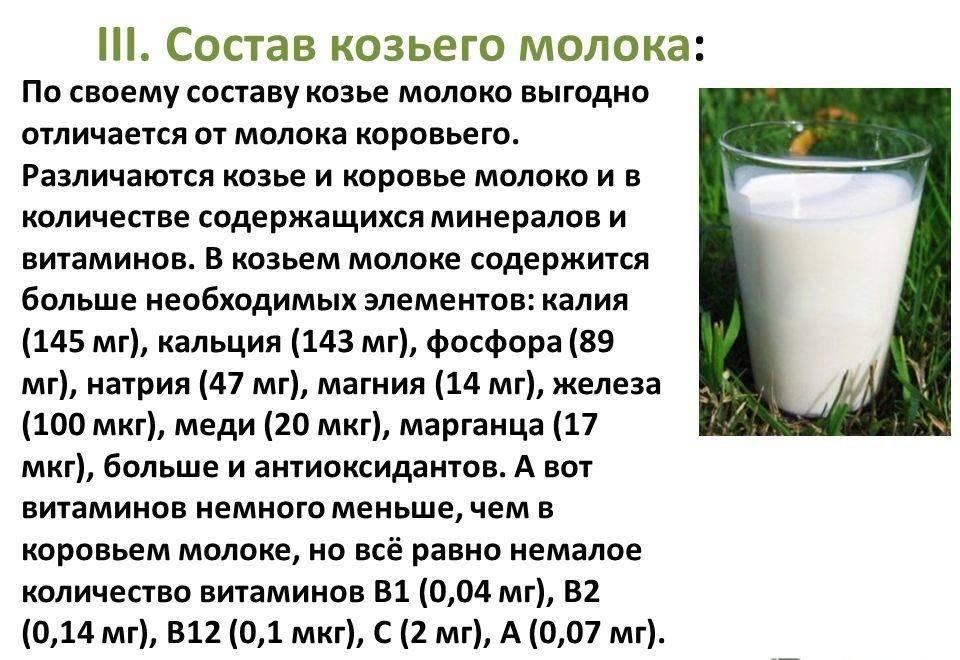 Полезно ли козье молоко детям с какого возраста можно давать