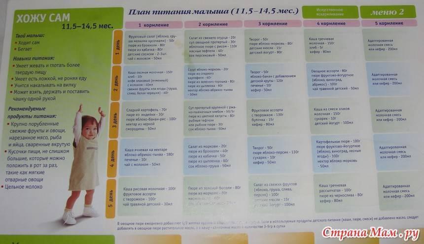 Детское меню от 1 до 1.5 лет на неделю – таблица с рецептами
