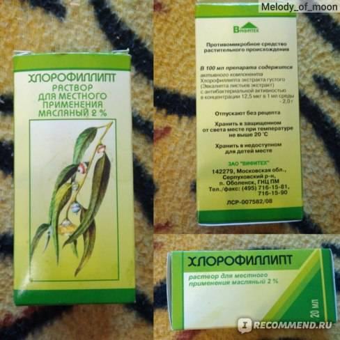 Хлорофиллипт раствор для приема внутрь и местного применения спиртовой 1% флакон 50 мл   (вифитех) - купить в аптеке по цене 237 руб., инструкция по применению, описание, аналоги