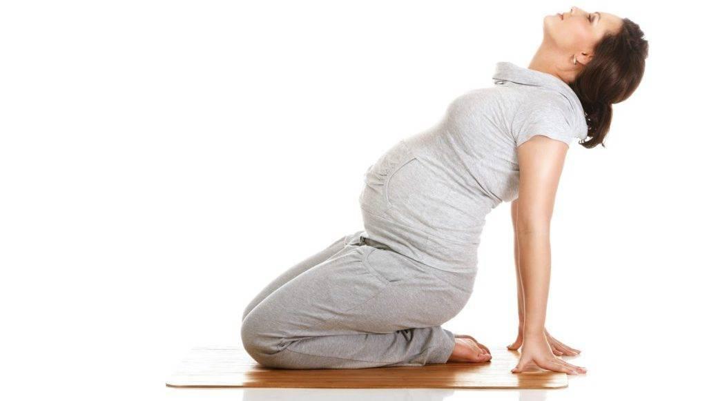 Йога для беременных: 2–3 триместр, упражнения в домашних условиях, видео | правильное поведение | vpolozhenii.com