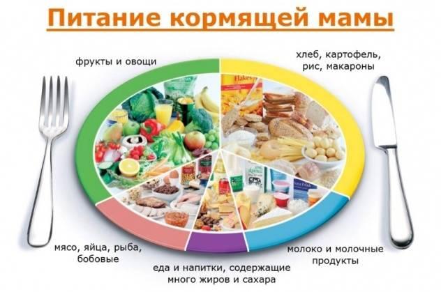Что можно есть кормящей маме: популярные мифы и советы врача-диетолога