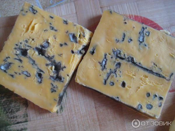 Можно ли есть сыр бри кормящей маме? - страна мам