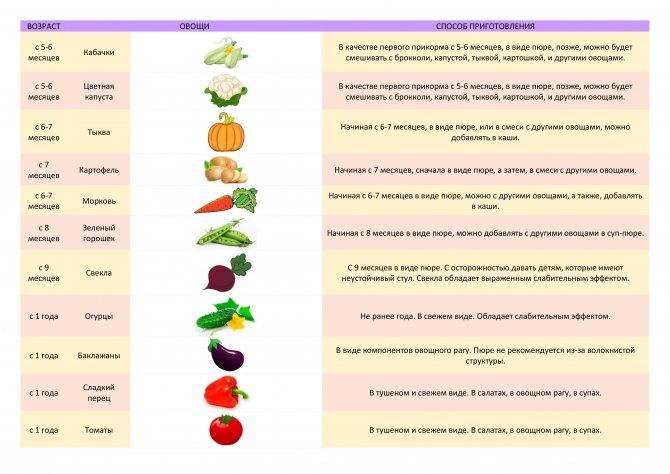 Как приготовить кабачок для ребенка 5-11 месяцев