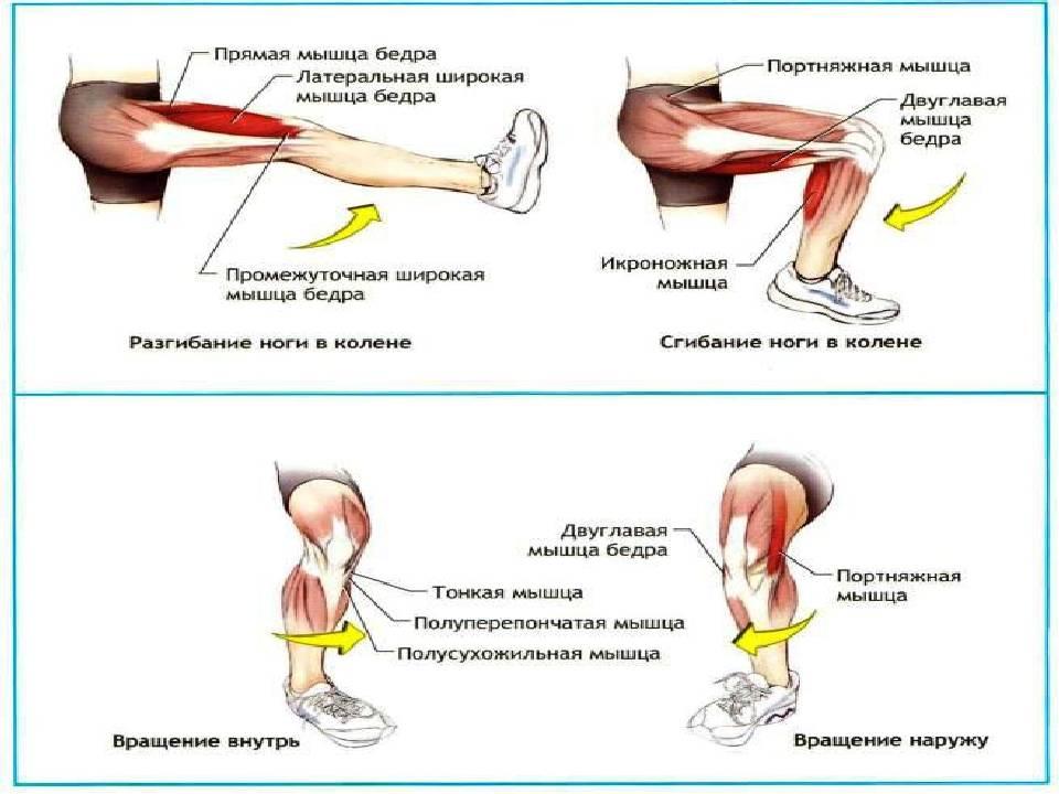 Почему хрустят колени? советы от ревматолога и лечение в челябинске | медицинский центр ньюмед