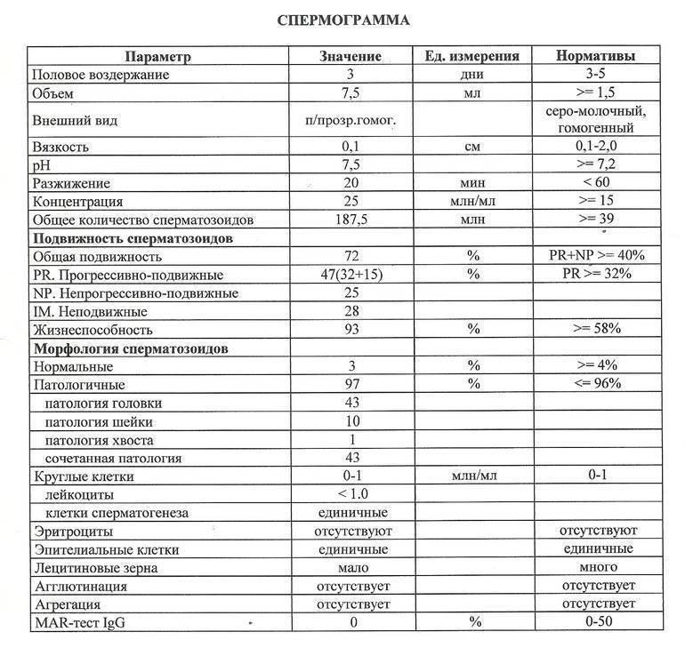 Спермограмма: главный анализ при мужском бесплодии