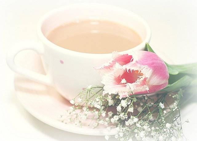 Полезен ли для лактации чай с молоком