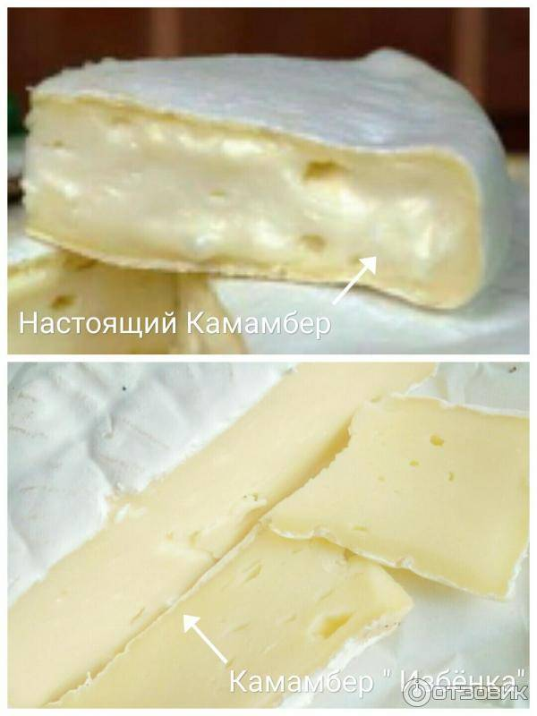 Хранение мягких сыров с плесенью: бри, камамбер, бресс блю