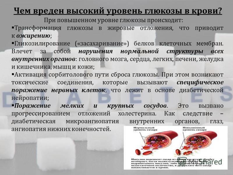 Гипогликемия у детей | medtronic diabetes russia