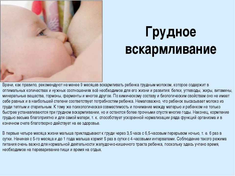 """Температура у кормящей матери - что делать?   проблемы и решения   медицинский центр """"лактовита""""   москва"""