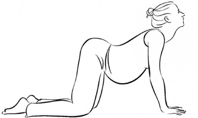 Комплекс профилактических упражнений для беременных при симфизите: «кошечка» и другие элементы