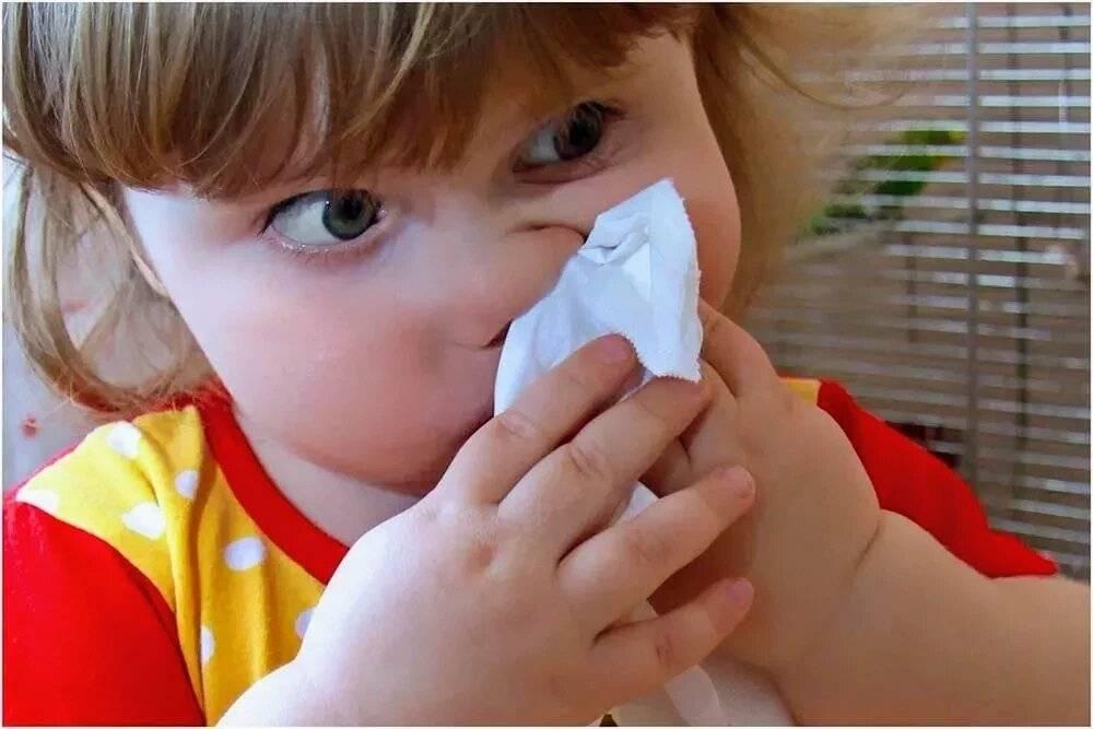 Если ребенок не умеет высмаркиваться. как научить ребенка сморкаться: советы для детей. комфорт при сморкании