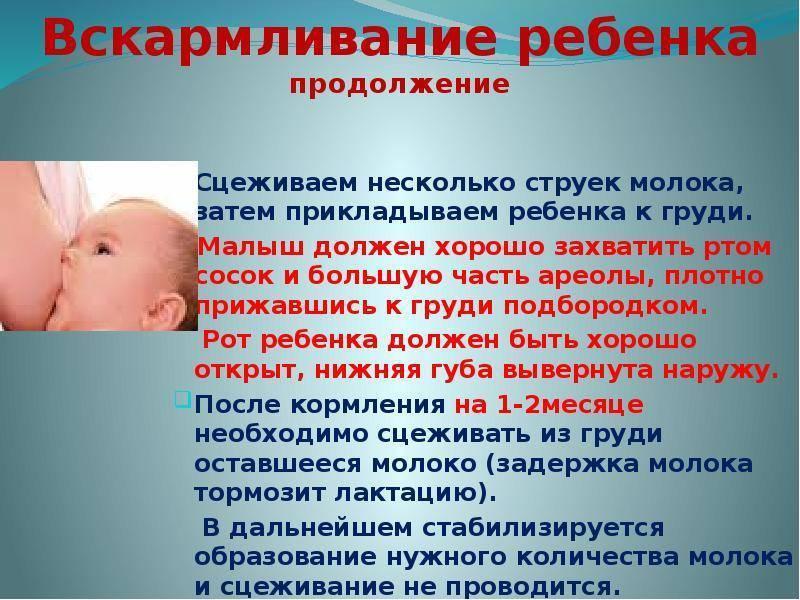 Cколько по времени кормить новорожденного грудным молоком