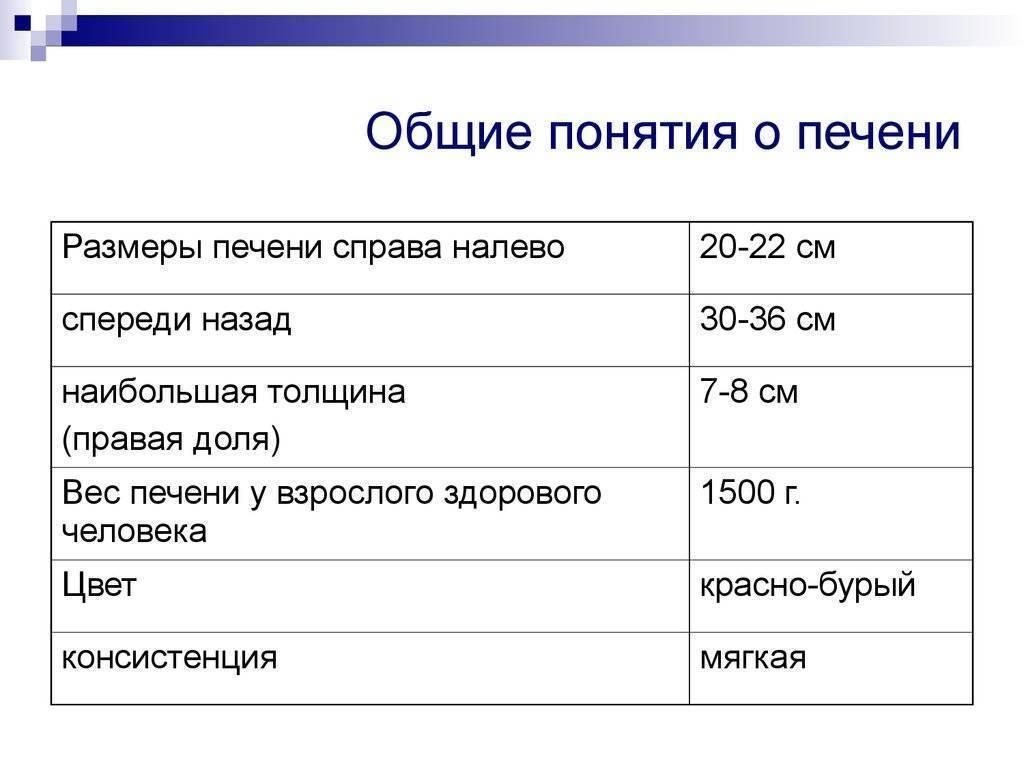 Нормальные размеры печени у взрослых по узи: показатели увеличения и уменьшения органа