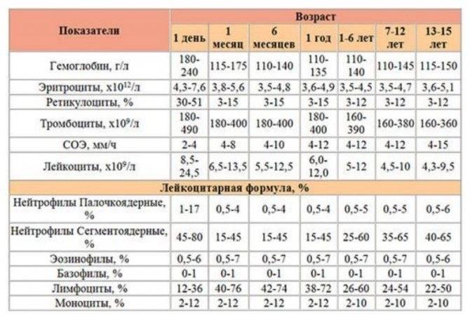 Анализ на агрегацию тромбоцитов: диагностика тромбов