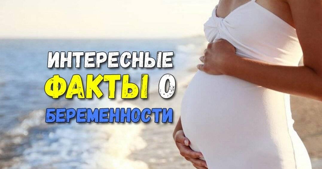 Чего вы не знаете о беременности? 20 фактов о беременности, которые ты могла не знать