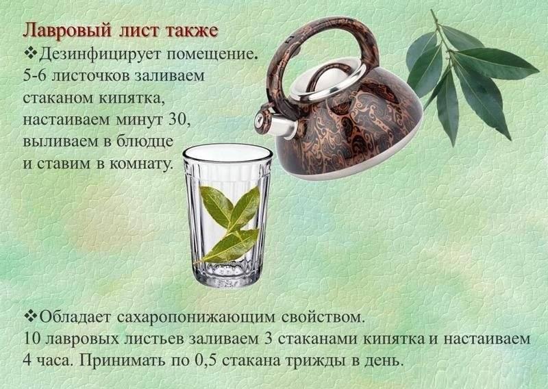 Аборт (прерывание беременности) в новосибирске - евромед клиника