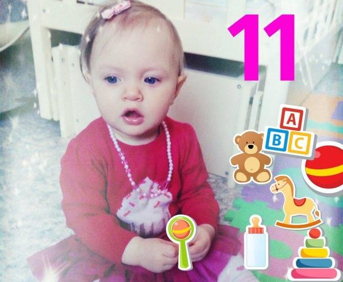 От 11 до 12 месяцев